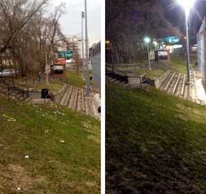 Talbot Park litter - before and after