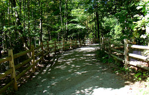 Walk - path