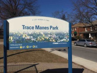 Trace Manes Park will be the future home of the The Georgia Walsh Memorial Playground. Staff Photo.