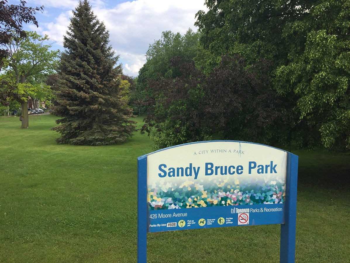 Sandy Bruce Park today.