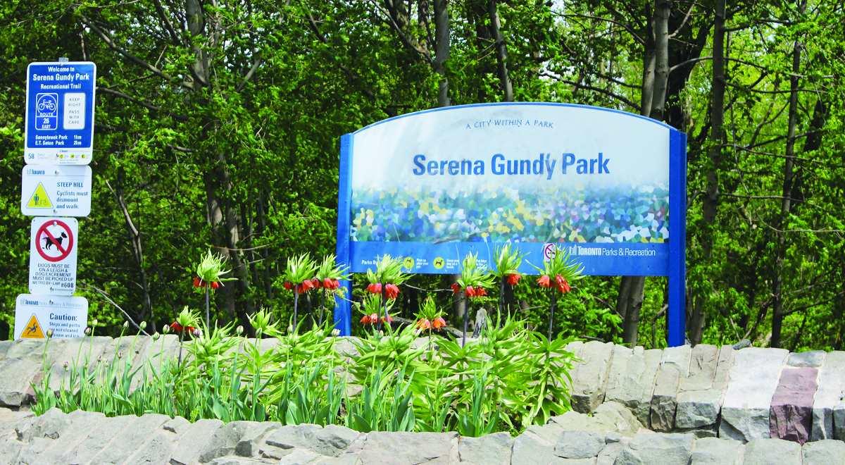 Serena Gundy Park Sign Photo. Photo By Robin Dickie.