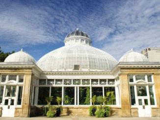 Allan Gardens.