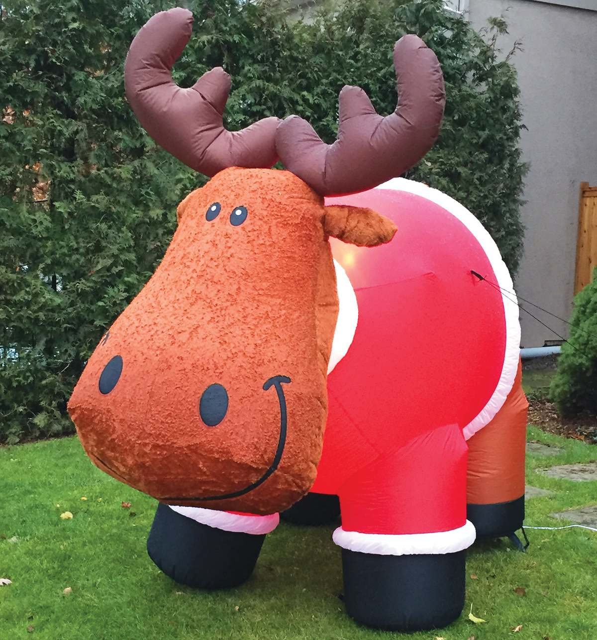 Inflatable moose on lawn. Photo By Robin Dickie.