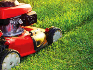 Lawnmower. Shutterstock.