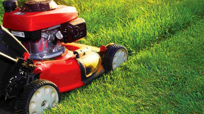 Lawnmower. Shutterstock.
