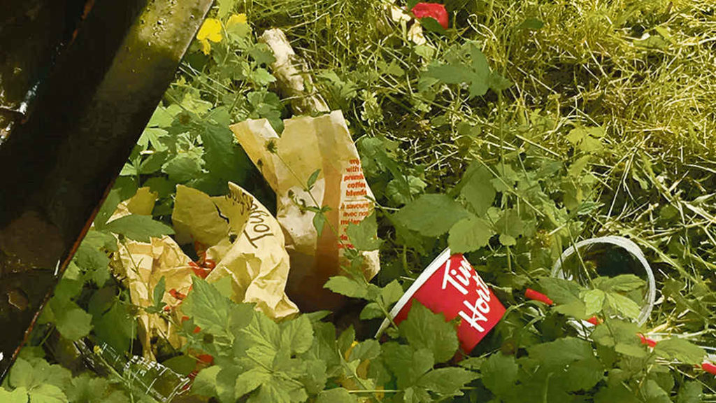 Garbage at Trace Manes Park. Photo by Robin Dickie.