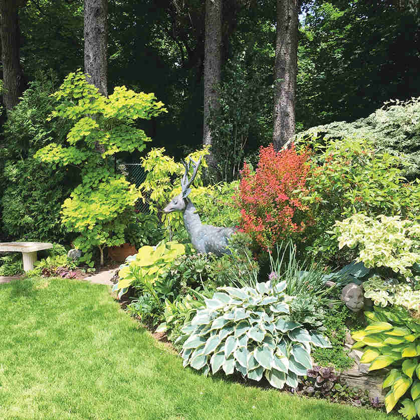 A Leaside Garden. Photo Debora Kuchme.