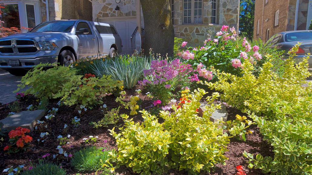 """The """"Garden of Distinction"""" at 175 Hanna Road."""