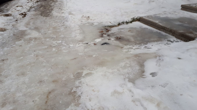This shows what happens when the sump pump empties onto an impervious surface.