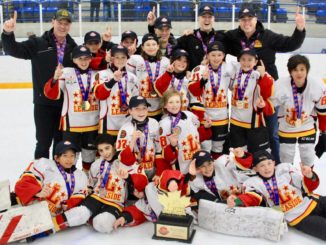 The Atom AA Leaside Flames.