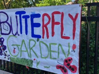A butterfly garden at Rolph Road.