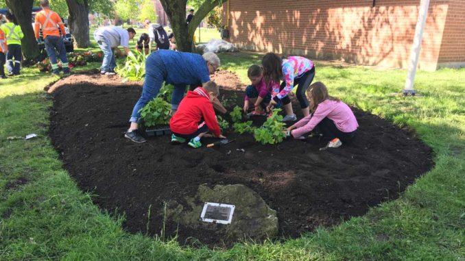 Junior Gardeners did it again!