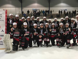 For the first time in 20 years, a Leaside Wildcats team has brought home gold from the provincial finals.