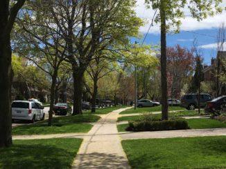 A sidewalk in Leaside. Staff photo.