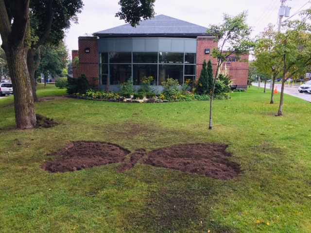 The Butterfly Garden starts to take shape. Photo Rick Hutchings.