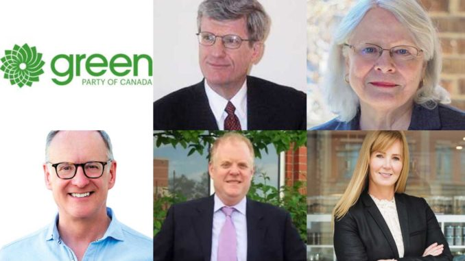 Don Valley West Federal Candidates 2019.