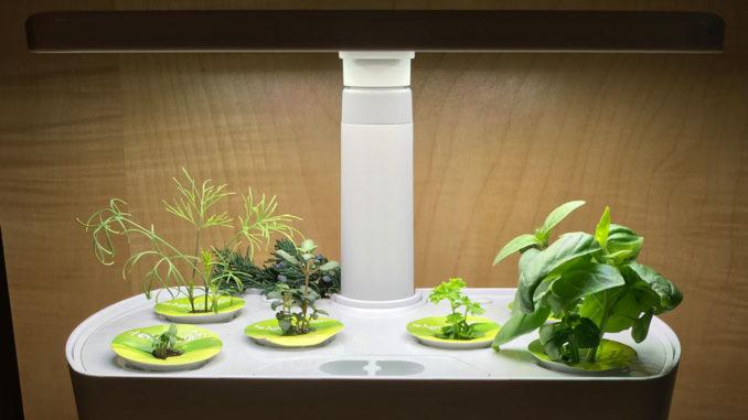 Space age hydroponics!