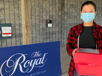The 2020 virtual Royal Winter Fair is hosting a butter tart competition. The author with her entry.