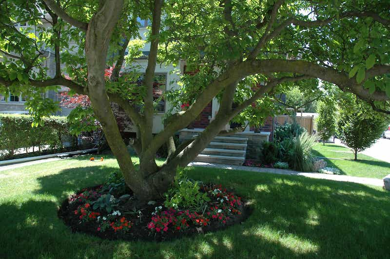 The Garden Of Distinction at 298 Laird Drive