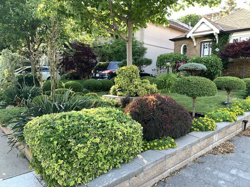 """Honourable mention to the """"Garden of Distinction"""" at 102 Leacrest Road"""