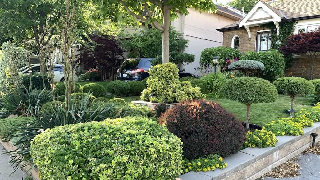 """Honourable mention to the """"Garden of Distinction"""" at 98 Parklea Drive"""