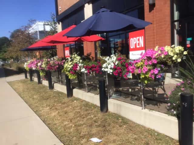 The beautiful plantings at the Aroma Espresso Bar in the Longo's Plaza.