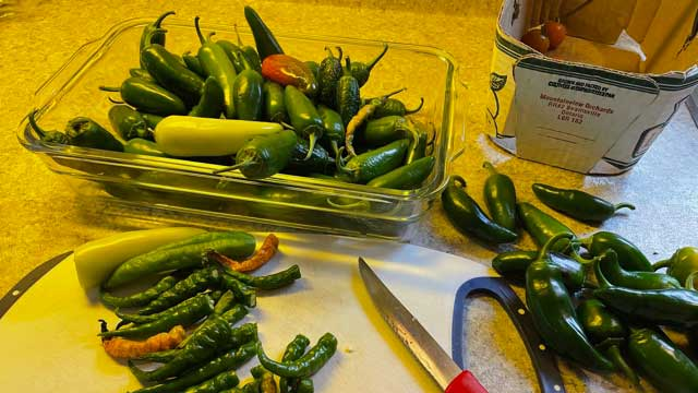 Though Tim's harvest was not as bountiful this year, he was still able to produce enough to pickle and preserve for the long winter months ahead.